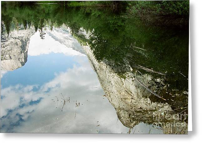 Mirrored Greeting Card by Kathy McClure