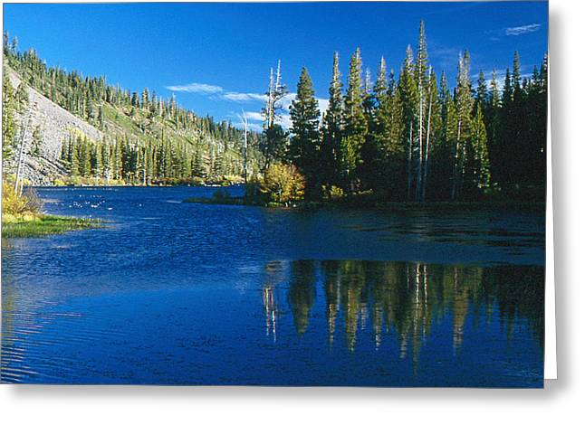 Greeting Card featuring the photograph Mirrored Lake by Gary Brandes