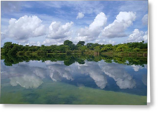 Mirrored Greeting Card by Tammy Chesney
