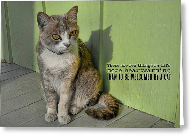 Miss Esmeralda Quote Greeting Card by JAMART Photography