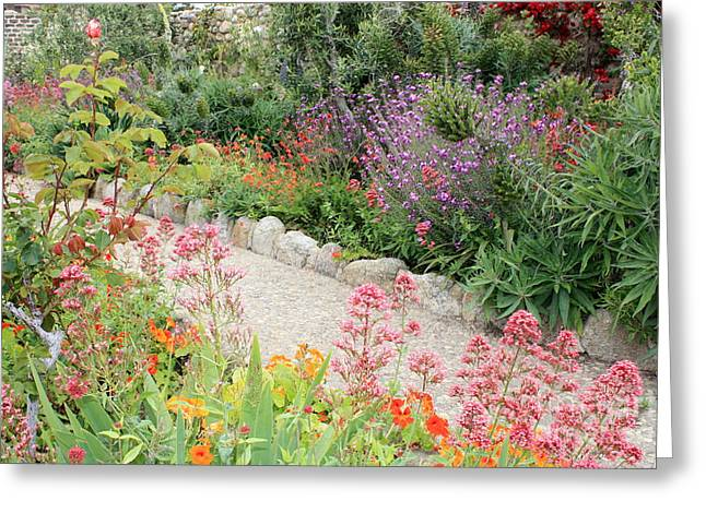 Mission Garden Greeting Card by Carol Groenen