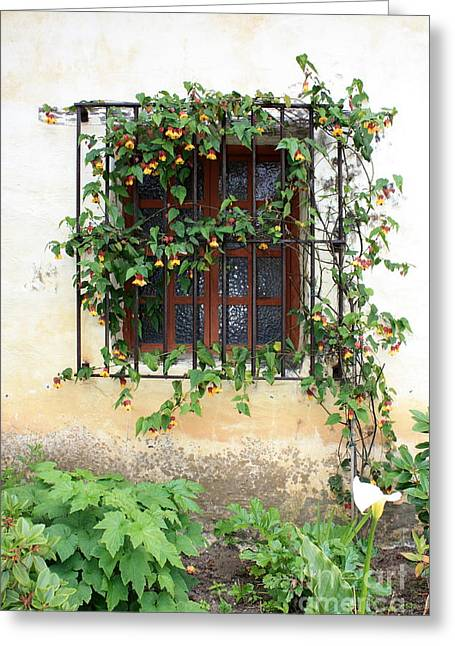 Mission Window With Yellow Flowers Vertical Greeting Card by Carol Groenen