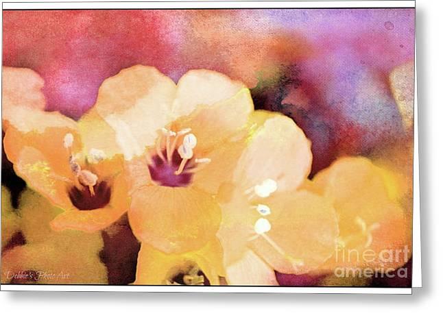 Missouri Wildflowers 5  - Polemonium Reptans -  Digital Paint 6 Greeting Card