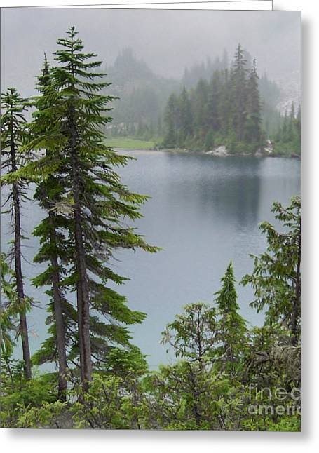 Greeting Card featuring the photograph Mist At Snow Lake by Charles Robinson