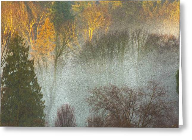 Mist In The Park Greeting Card