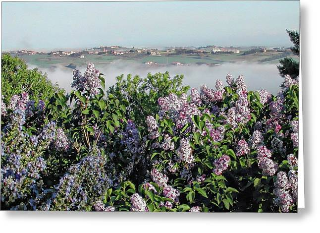 Mist In The Valley Greeting Card by Dorothy Berry-Lound