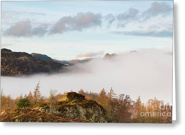 Mist Over Hodge Close Greeting Card by Tony Higginson