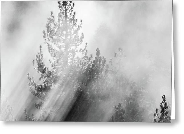 Mist Shadows Greeting Card