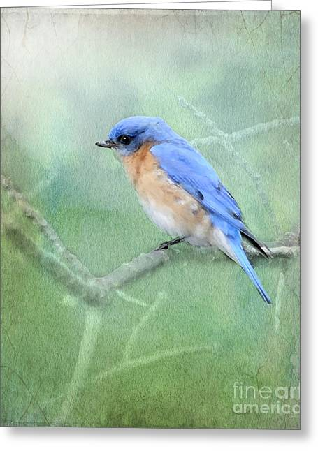 Greeting Card featuring the photograph Misty Blue by Betty LaRue
