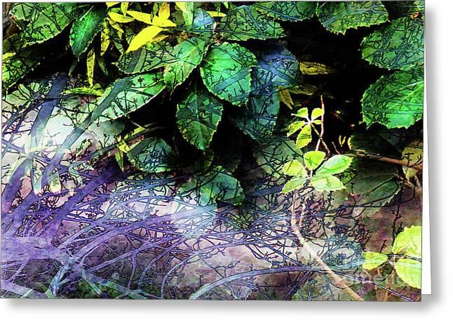 Misty Branches Greeting Card by Deborah Nakano