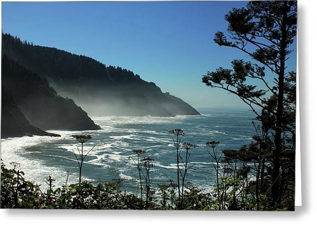 Misty Coast At Heceta Head Greeting Card by James Eddy