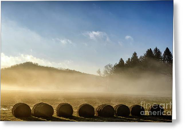 Greeting Card featuring the photograph Misty Country Morning by Thomas R Fletcher