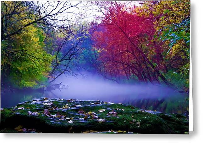 Stream Digital Greeting Cards - Misty Creek Greeting Card by Bill Cannon