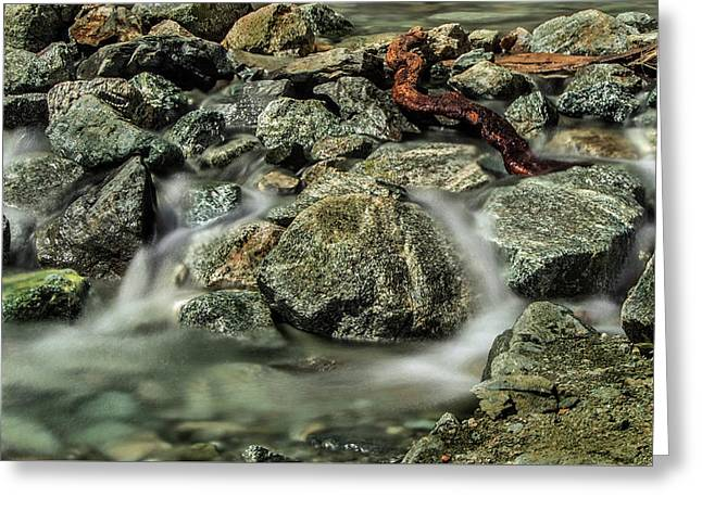 Misty Creek Greeting Card