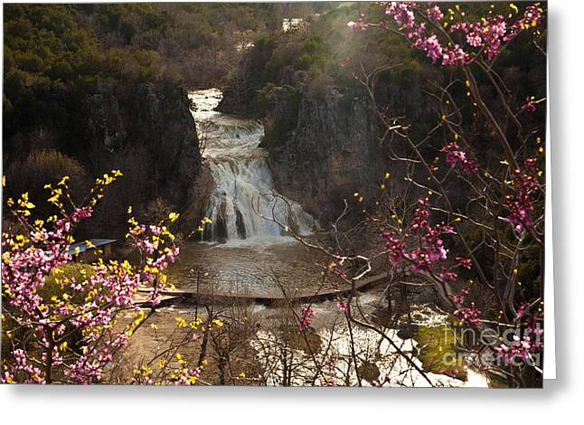 Misty Day In Turner Falls Greeting Card