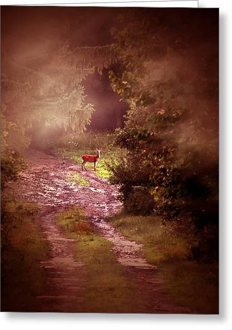 Misty Deer Greeting Card