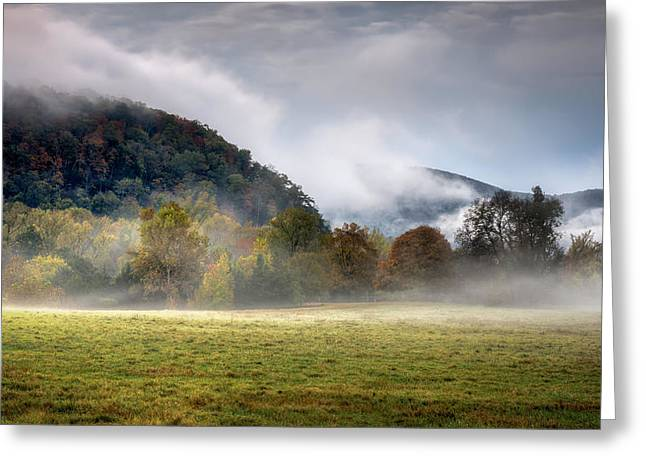 Misty Field Greeting Card