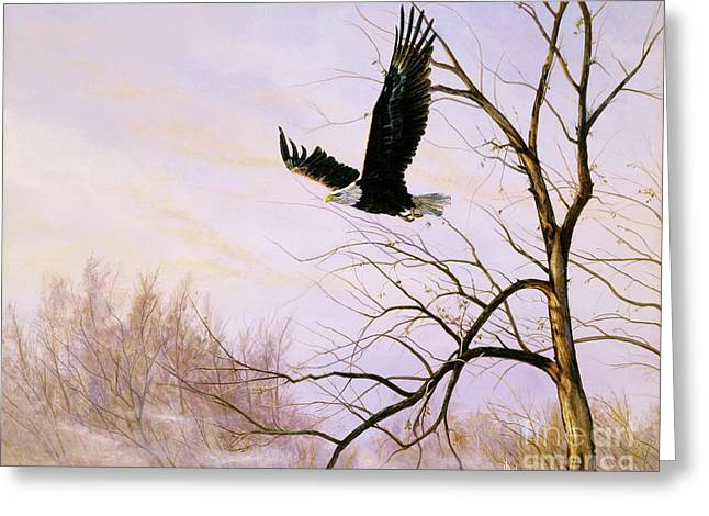 Misty Flight-bald Eagle Greeting Card