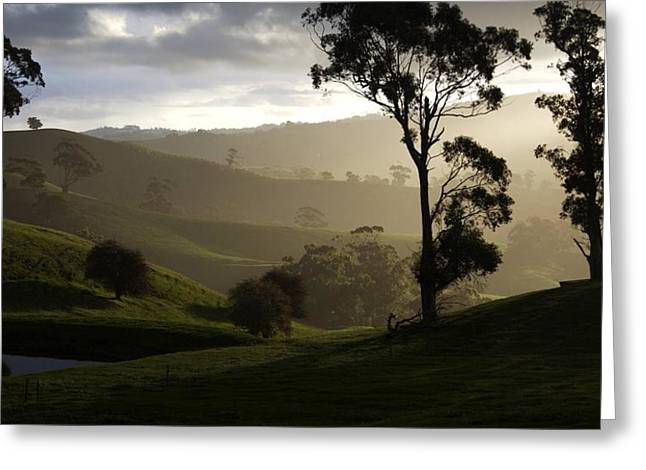 Misty Greeting Card by Lee Stickels
