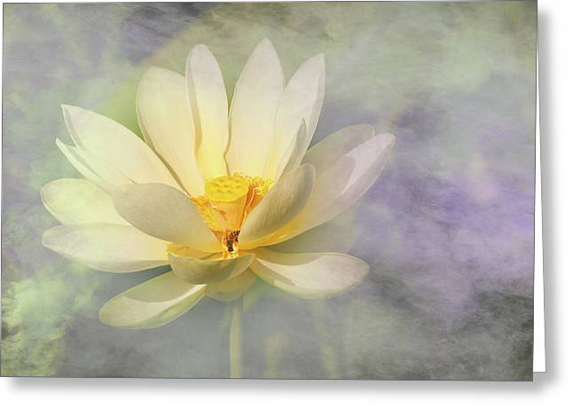 Greeting Card featuring the photograph Misty Lotus by Carolyn Dalessandro