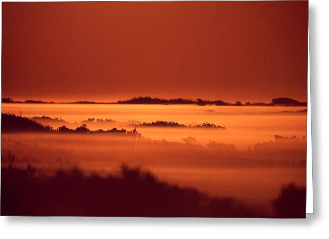 Misty Meadow At Sunrise Greeting Card
