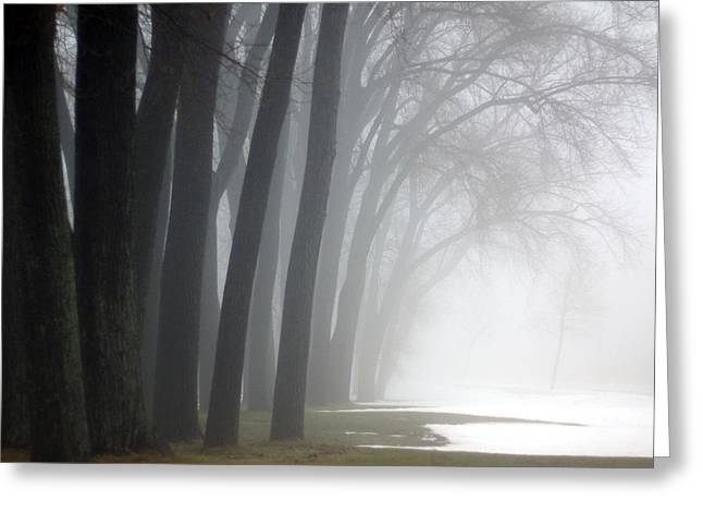 Misty Moments Greeting Card by Linda Mishler