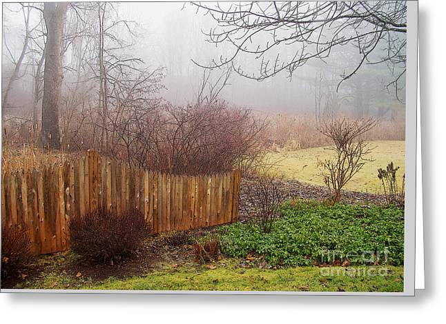 Misty Morn Greeting Card by Betsy Zimmerli