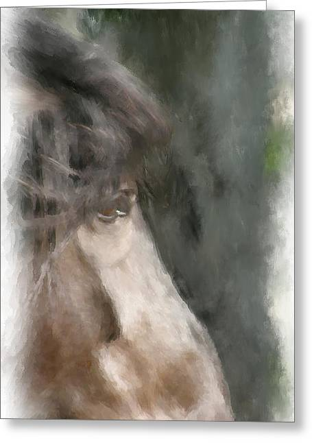 Misty Morn Greeting Card by Elzire S