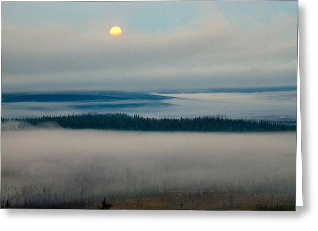 Misty Morning Along The Jim River Greeting Card by Adam Owen