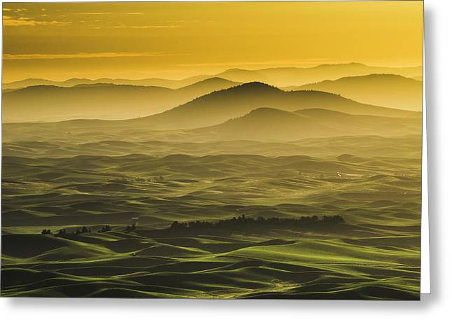 Misty Morning At Palouse. Greeting Card