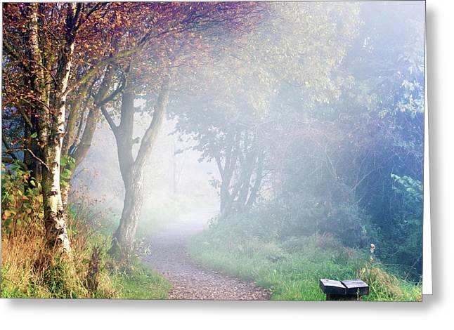 Misty Morning At Sutton Bank Greeting Card by Janet Burdon