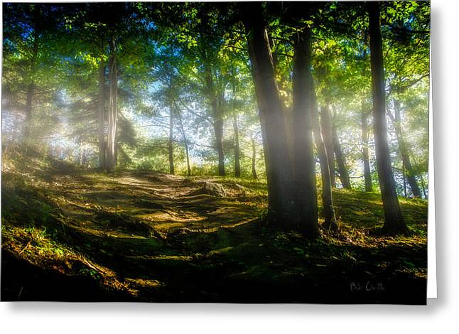 Misty Morning Greeting Card by Bob Orsillo