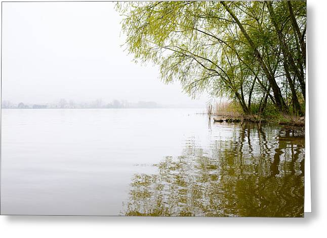 Misty Morning By The Lake Greeting Card by Marco Oliveira