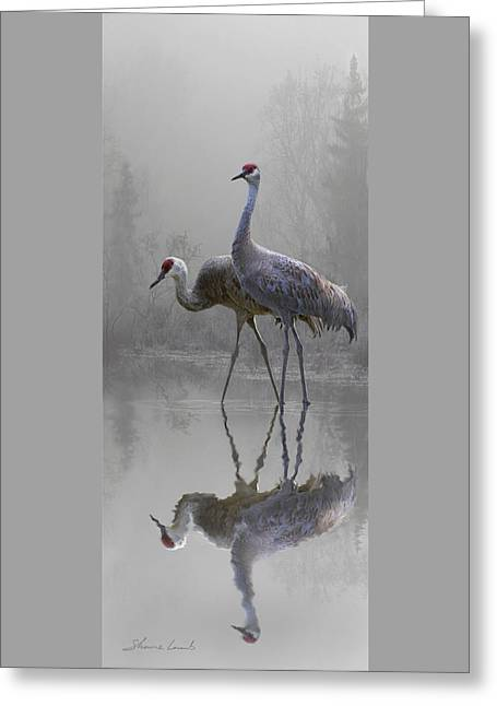 Misty Morning Cranes Greeting Card by Shane Lamb