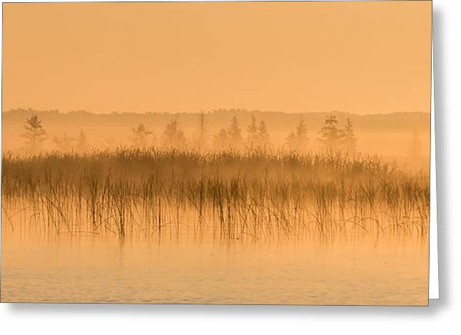 Misty Morning Floating Bog Island On Boy Lake Greeting Card