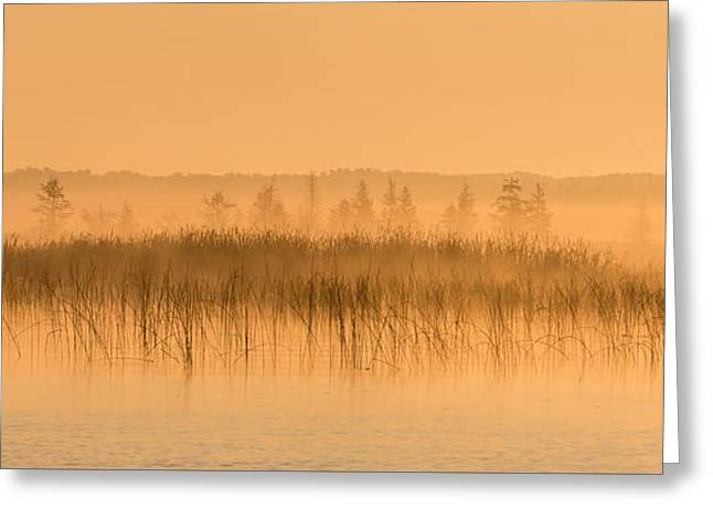 Misty Morning Floating Bog Island On Boy Lake Greeting Card