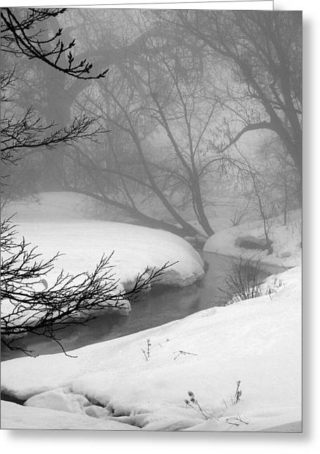 Misty Morning Greeting Card by Julie Lueders