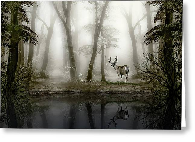 Greeting Card featuring the photograph Misty Morning Reflections by Diane Schuster