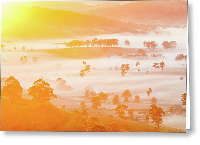 Misty Mornings Greeting Card by Az Jackson