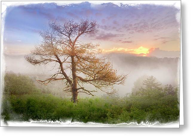 Misty Mountain Greeting Card by Debra and Dave Vanderlaan