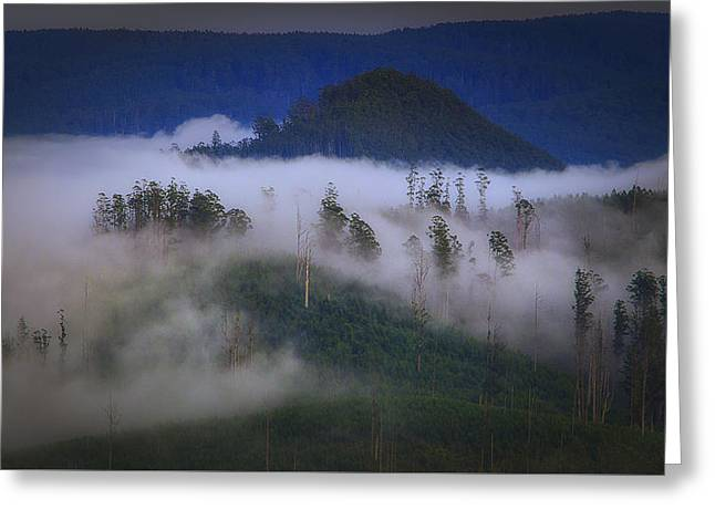 Greeting Card featuring the photograph Misty Mountains by Tim Nichols