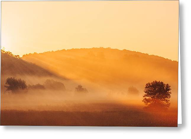 Misty Rays Greeting Card by Todd Klassy