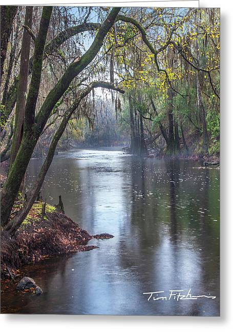 Misty River Greeting Card by Tim Fitzharris