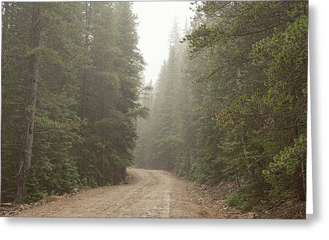 Greeting Card featuring the photograph Misty Road by James BO Insogna