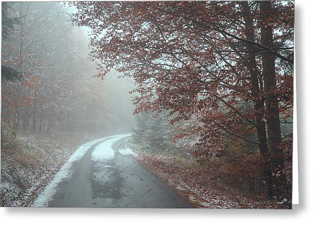 Misty Road. Series In Mysterious Woods Greeting Card