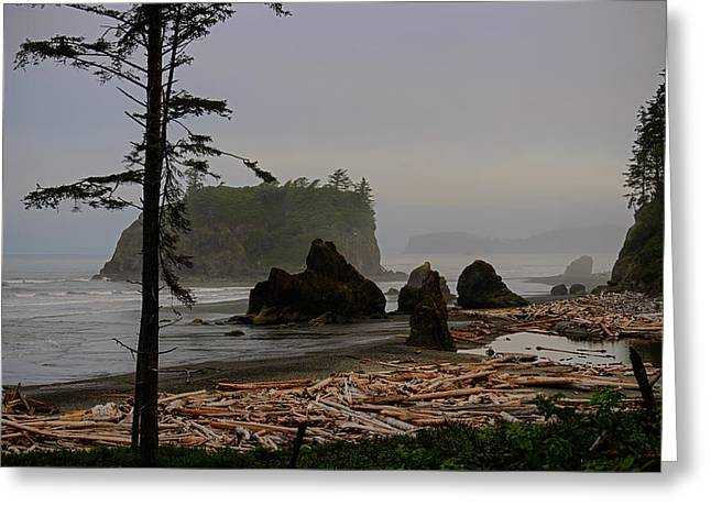 Misty Ruby Beach Greeting Card by Tikvah's Hope