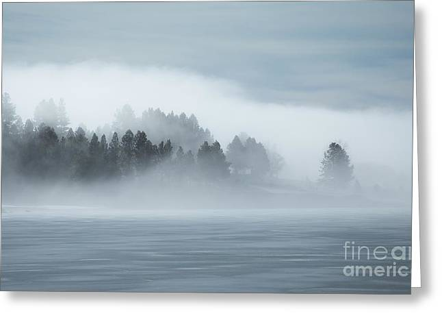 Misty Shores Greeting Card by Idaho Scenic Images Linda Lantzy