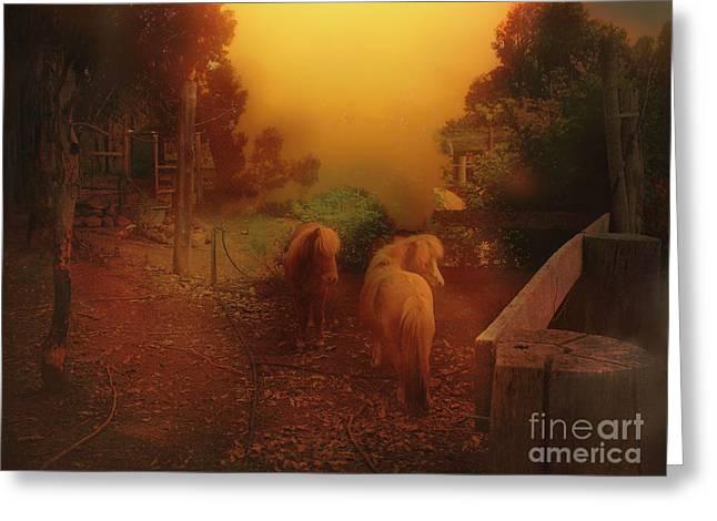 Misty Sundown Greeting Card
