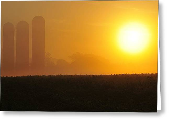 Misty Sunrise Greeting Card by Dan Myers