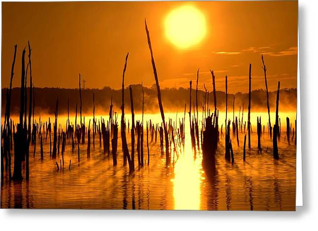 Misty Sunrise On The Reservoir Greeting Card